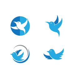 Bird logo template vector