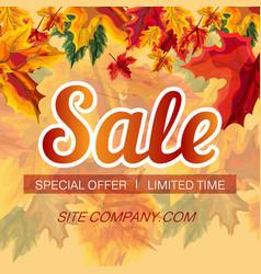 bright design for autumn sale vector image