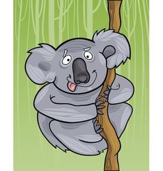 cartoon funny australian koala vector image
