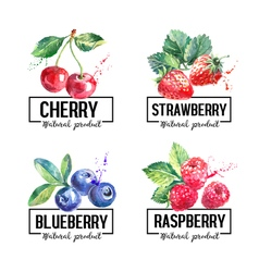 Eco food labels set Watercolor hand drawn sketch vector image