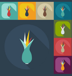 Flat modern design with shadow icons onion vector
