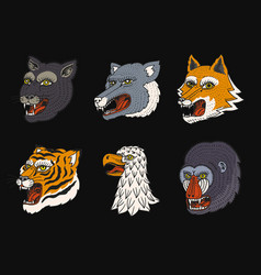 head wild animal predator puma wolf fox tiger vector image