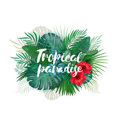 tropical paradise label over background vector image