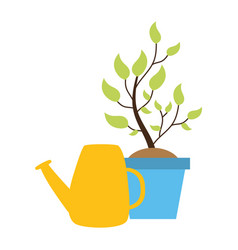 watering can potted plant vector image