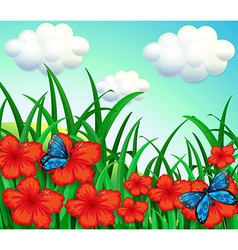 A garden with red flowers and blue butterflies vector