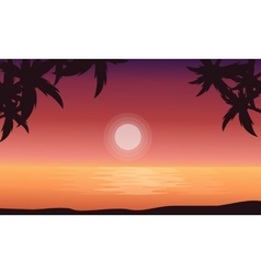 At sunrise beach scenery of silhouettes vector