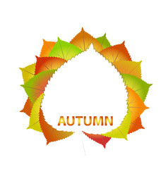 Colorful autumn leaves on a white paper back to vector