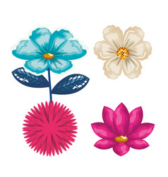 flowers bloom decorative icon vector image