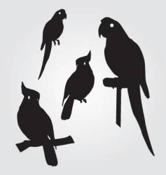 Parrots vector