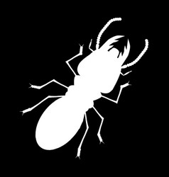 Shadow of termite with back groundcartoon vector