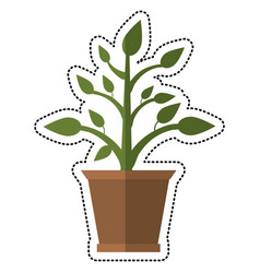 cartoon pot plant garden image vector image vector image