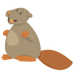 cartoon beaver animal character vector image