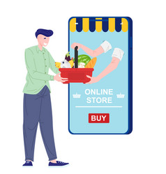 delivery online grocery vector image