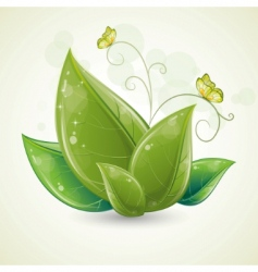green leaves design with butterfly vector image