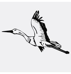 Hand-drawn pencil graphics stork swan Engraving vector image