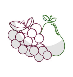 silhouette delicious pear and grape fruit vector image