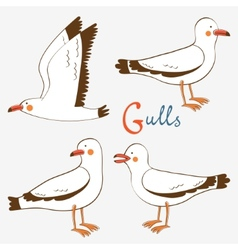 Seagulls collection vector image