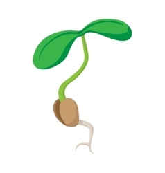 Sprout icon cartoon style vector image vector image