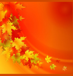 Autumn background with leaves nature vector image vector image