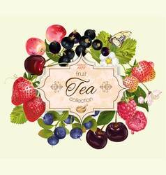 Berry mix banner vector