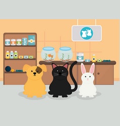 group pets in veterinary vector image