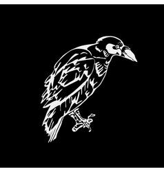 Hand-drawn pencil graphics bird raven crow rook vector image