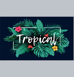 Tropical forest with rectangle frame on blue backg vector