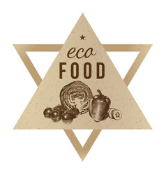 hand drawn eco food background vector image
