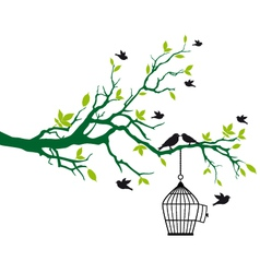 Tree branch with birds and birdcage vector image