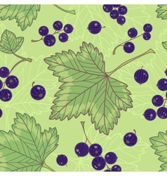 Black currants seamless pattern vector image