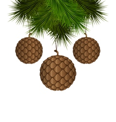 cones like christmas balls hanging on pine vector image