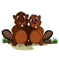 Cute couple beaver cartoon vector