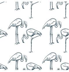 Flamingo animal art line modern seamless pattern vector
