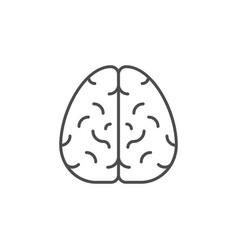 Human brain line outline icon vector