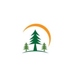 pine symbol vector image