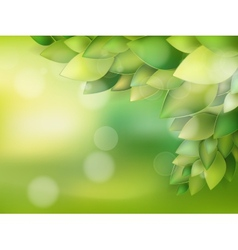 Summer natural backgrounds for your design EPS 10 vector image