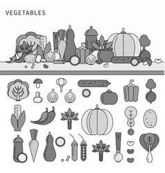 vegetables set flat line line monochrome vector image