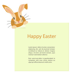 cute easter bunny looks out vector image