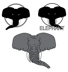 Depicting the head of an elephant vector