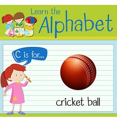 Flashcard letter C is for cricket ball vector