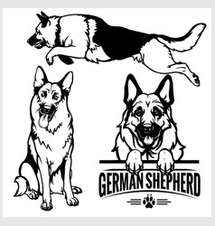 German shepherd dog - set isolated vector