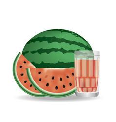 Realistic watermelon vector