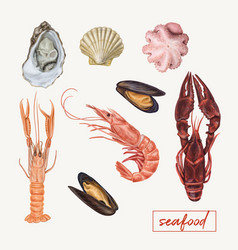 Set of seafood hand drawn vector
