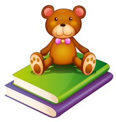 A bear above the pile of books vector image vector image