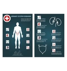 Brochure health flyer template vector image