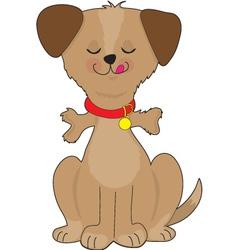 dog bone vector image vector image