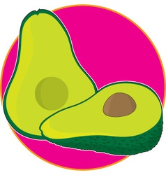 avocado graphic vector image