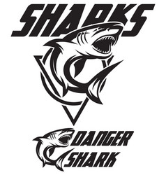 monochrome of a toothy shark vector image