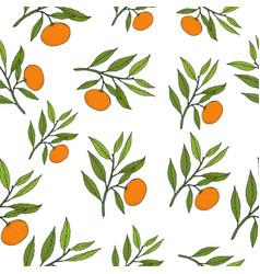 mandarine seamless pattern vector image