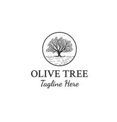 olive trees logo designs inspiration vector image
